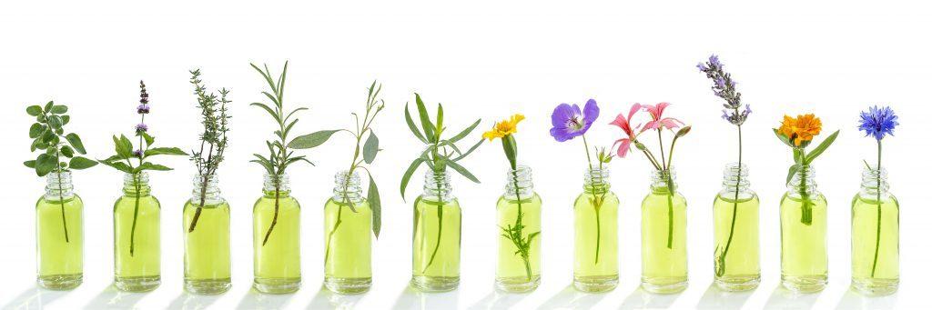 bouteille_avec_fleurs_serie_iStock-1080930658-1024x341